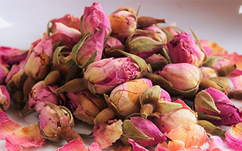Rose-Buds-Main